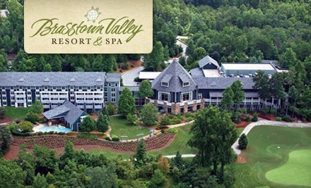 Brasstown-valley-resort