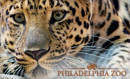 Philadelphia-zoo