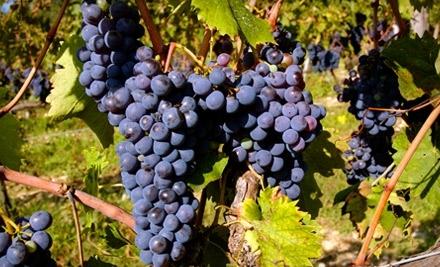 NJ Winery Deal