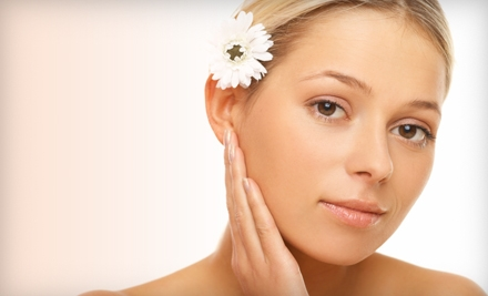 One or Three Microdermabrasions or Microdermabrasion and Facial at Elegant Salon Suite